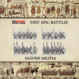 SAXONS MILITIA 3d printed miniatures